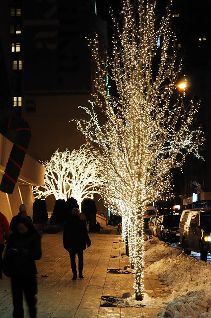4435945133 d4eb446701 for Sidewalk christmas lights
