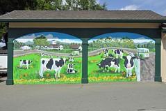 Meadowlark Dairy