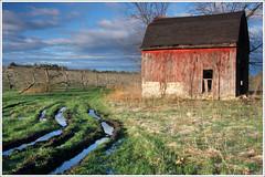 Apple Barn