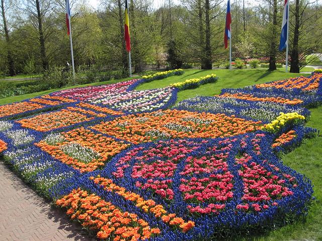 Nederlandse Bloemen Nederlandse Bloemen Zijn Nog
