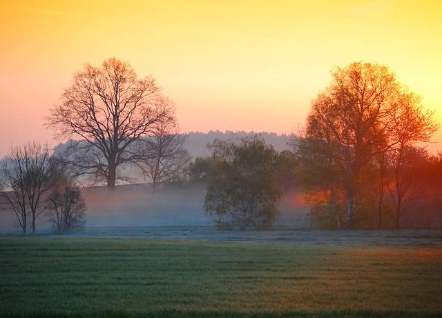 Amazing Morning