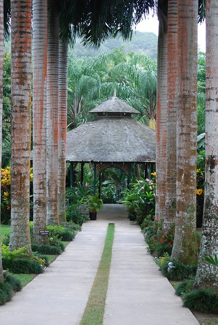 Priory Jamaica  city photos : Cranbrook Flower Forest Priory, Jamaica | Flickr Photo Sharing!