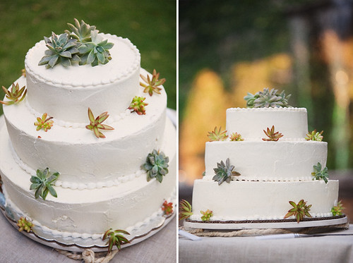 Succulent Wedding Cake-Stephanie Williams-Project Wedding-Camille Styles