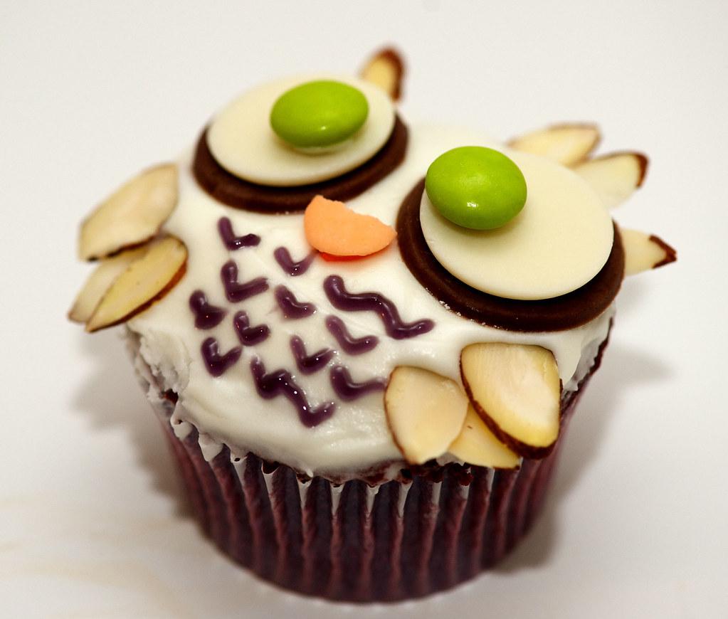 10 Favorite Owl Cupcakes