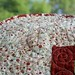 Close up of quilting by maricopafabrics/Jamie