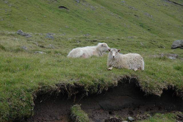 Eysturey, Faroe Islands