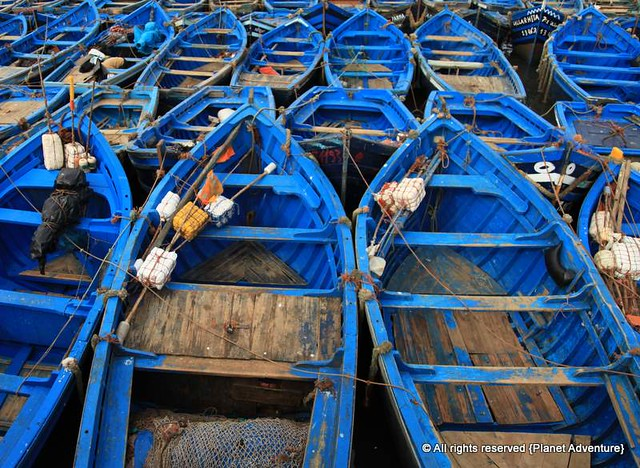 Fishing Boats - Essaouira - Morocco