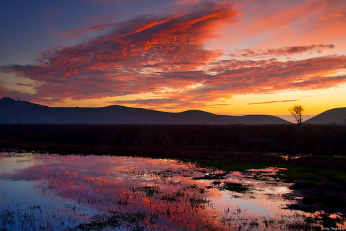 Wetland Sunset Reflections