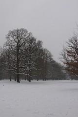 Neukölln January 2010