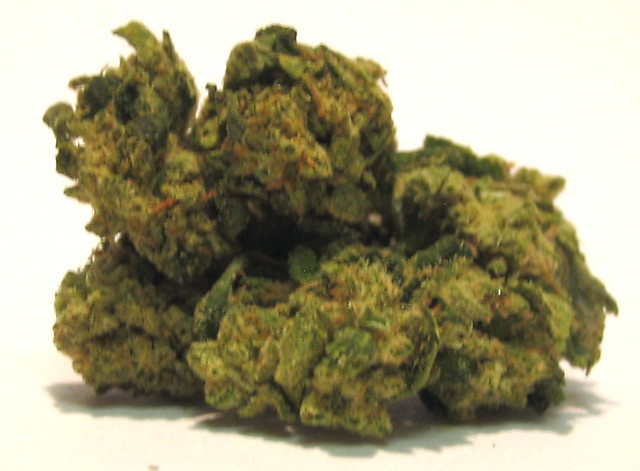 Coconut Kush http://www.flickr.com/photos/budlover/4317669804/