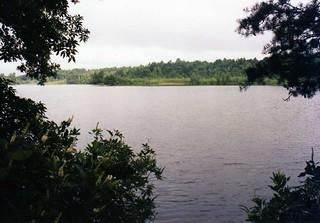 Killen Pond, Delaware