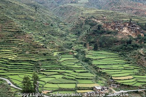 Jk000123 terraced farming plots wandgi countryside for Terrace farming images