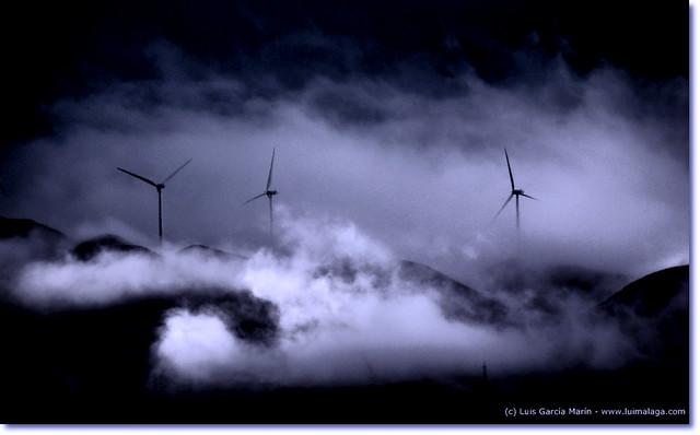 La voluntad del viento - The will of the wind