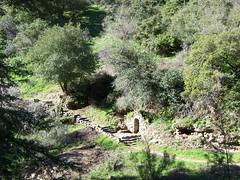 Alum Rock Canyon