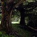 Small photo of Greasley Castle