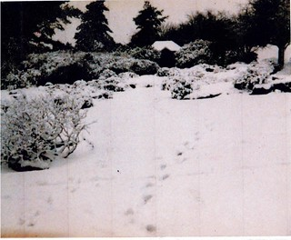 rock garden & summerhouse in snow