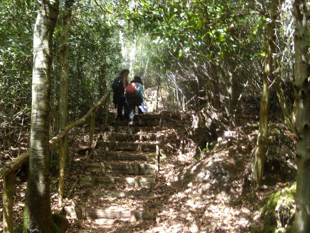 Steep steps Hurst Green to Westerham