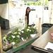 Copley-Fairlawn Kiwanis Flower Sale