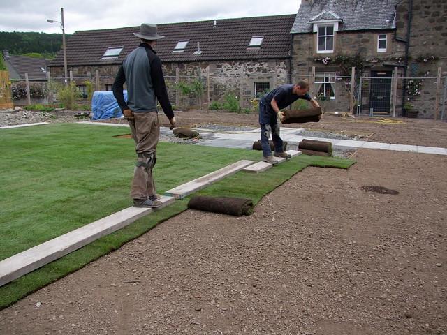 men laying turf grass