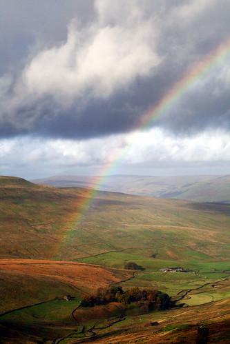 Rainbow 43258