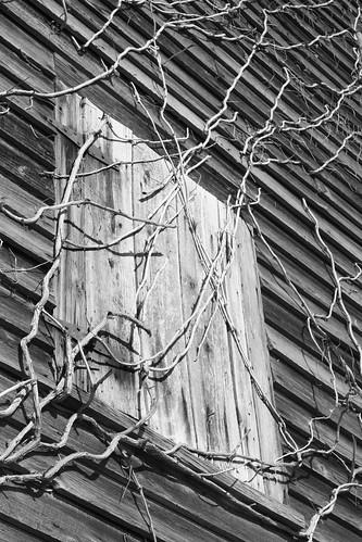 blackandwhite abandoned northcarolina 2010 canonxsi