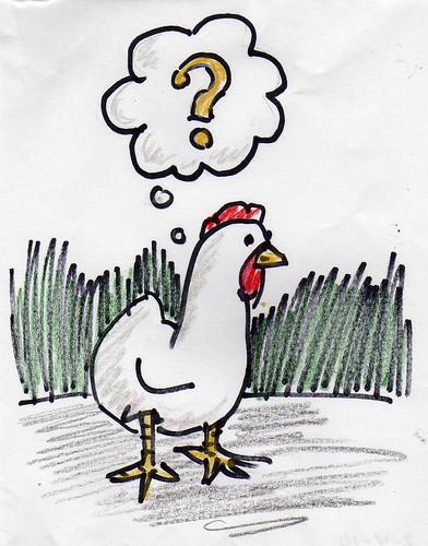 O kurczaczku i zebrze