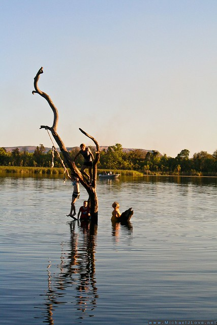 The Swim Beach Tree - Ord River River Play