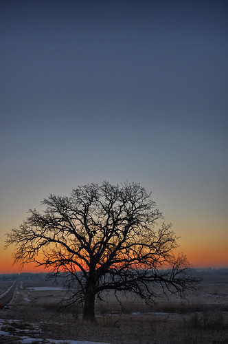 trees winter landscapes illinois nikon midwest blueskies sunrises baretrees pinoy silhouttes naturescapes d90 mchenrycounty nothernsuburbs setholiver1 cityofmchenry mchenrynationalglacialstatepark