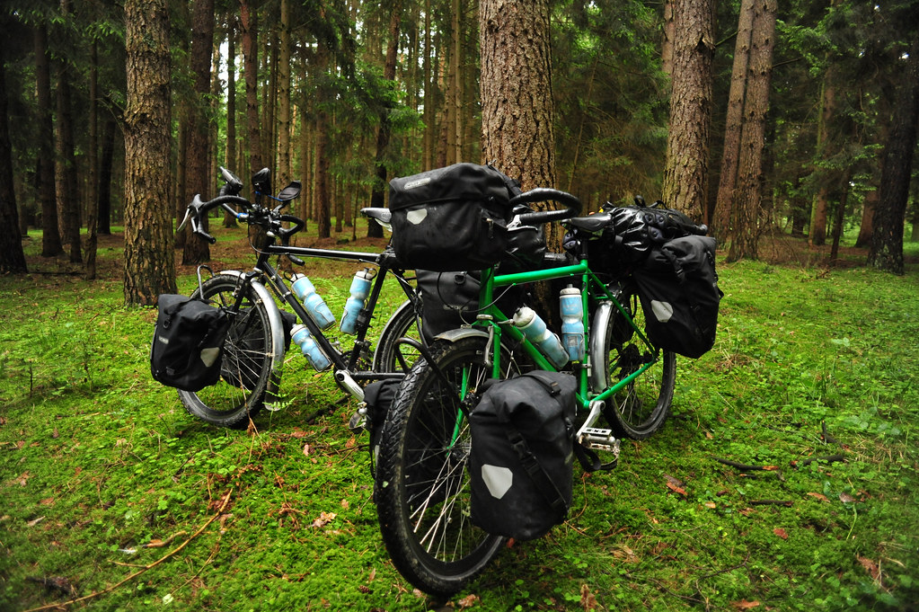 Our Bikes in a German Forest