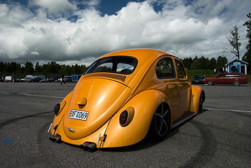 Beetle by T.Onnemar