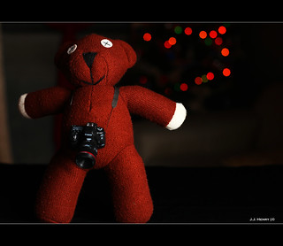 Teddy the Photographer