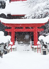 Winter Comes to the Shrine