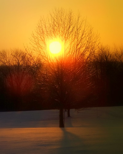 winter ohio cleveland beautifullight wintersunrise kirtland holdenarboretum lowmorningsun awintermorning seenfromsperryroad