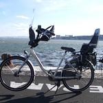 Bicicleta de mãe Gazelle Bloom