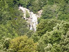 Forêt et cascade de l'Alta Rocca