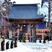 Shrine in Winter.  (Hirosaki Japan). © Glenn Waters. 1,500 visits to this photo.   Thank you.