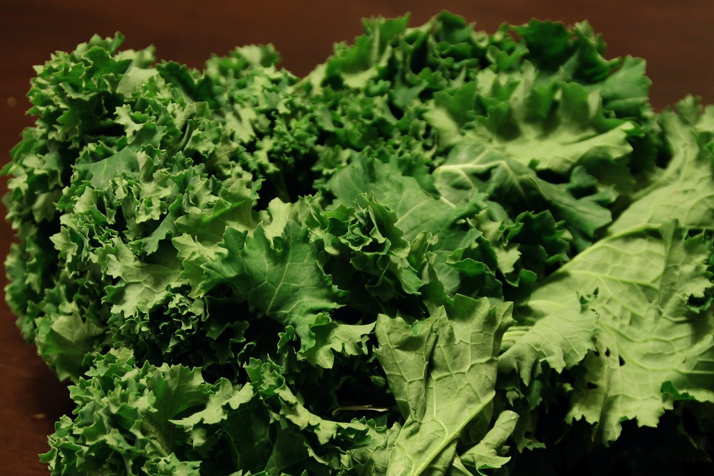 mustard greens frozen, cooked, boiled, drained, with salt
