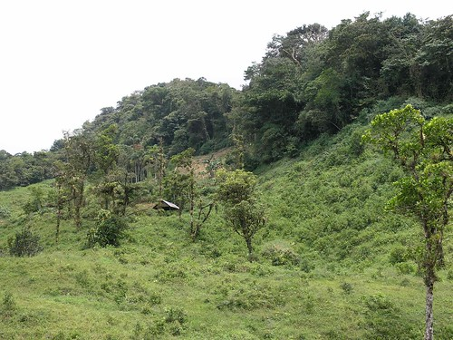 mountains latinamerica forest landscapes parks panama centralamerica 2007 centroamerica veraguas américalatina gpsapproximate