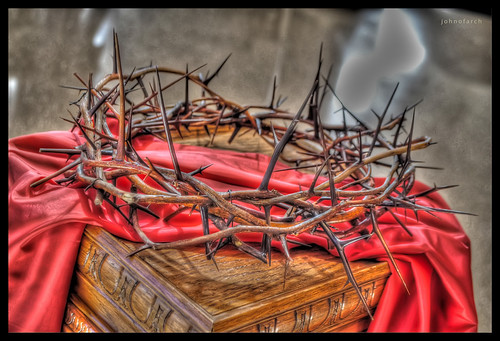Crown of Thorns by johnofarch14