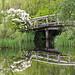 Bridge over Water by TylerIngram