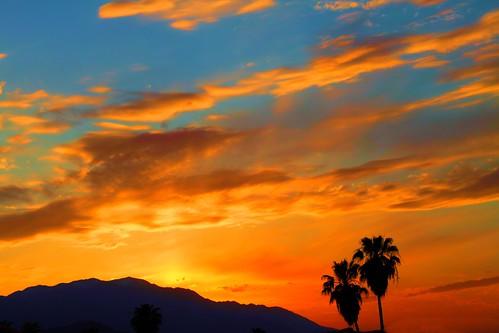 california sunset desert palmtrees palmdesert mountsanjacinto