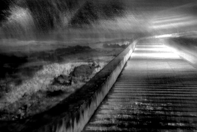 El Camino de los Sueños