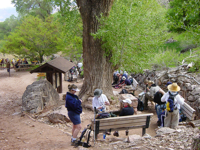 d3127 grand canyon indian gardens flickr photo sharing