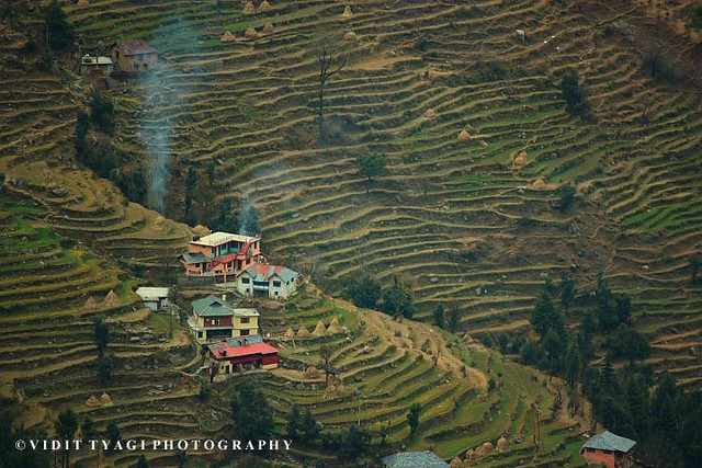 Terrace farming in a village in himachal pradesh india for Terrace india