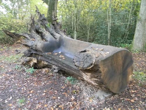 Unusual Bench