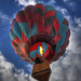 2010 Hot Air Balloon 370