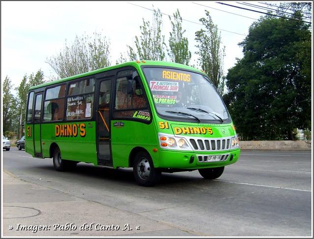 Buses Dhino´s