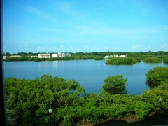 View from a condo at Seminole Isle