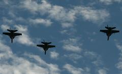 Fly By ( USAF F-18 )