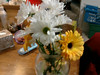 I got daisies for my birthday!